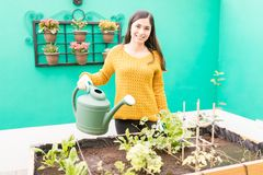 Beautiful Woman Taking Care Of Plants In Garden. Portrait of smiling urban woman watering small plants in garden royalty free stock photos