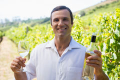 Portrait of smiling vintner examining wine Stock Photos