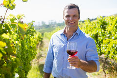Portrait of smiling vintner holding glass of wine Royalty Free Stock Images