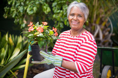 Portrait of smiling woman holding potted plant Stock Images