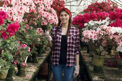 Portrait of smiling young woman gardener with pigtails holding pot chooses which flower to transplant royalty free stock photos