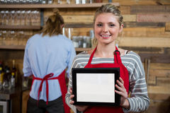 Portrait of smiling young woman showing digital tablet in background at coffee shop. Portrait of smiling young woman showing digital tablet with male colleague Stock Photography