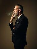 Portrait of smoking gentleman wearing trendy suit Stock Photos