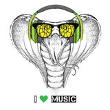 Portrait of snake with glasses and headphones. Vector illustration Stock Image
