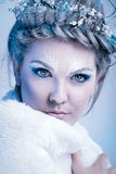 Portrait of snow queen stock photos