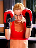 Portrait of sport girl boxing. Royalty Free Stock Images