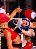 Portrait of sport girl boxing Royalty Free Stock Images