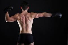Portrait sportsman boxer in studio dark background Royalty Free Stock Photography
