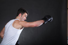 Portrait sportsman boxer in studio dark background Stock Photography