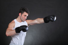 Portrait sportsman boxer in studio dark background Stock Photos