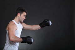 Portrait sportsman boxer in studio dark background Royalty Free Stock Photography