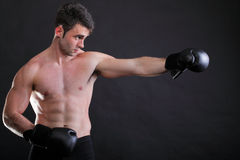 Portrait sportsman boxer in studio dark background Royalty Free Stock Images