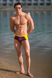 Portrait of a sporty, athletic, muscular sexy man in swimtrunks Royalty Free Stock Photos