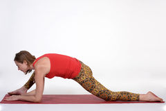 Portrait of sporty, healthy, young girl doing yoga exercises,work out, studio shot Stock Photo