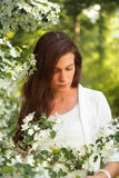 Portrait of spring brunette girl standing outdoor in blooming tr Royalty Free Stock Photo