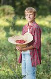 Portrait of standing boy holding red wildberries Royalty Free Stock Image
