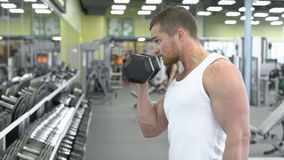 Portrait of strong athletic man at the gym training. bodybuilder does an exercise on the biceps with dumbbells stock images
