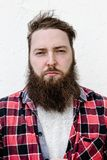 The portrait of the strong brutal man with a beard dressed in a checked shirt on the white background royalty free stock photos