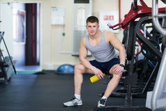 Portrait of a strong fit man in gym. Royalty Free Stock Photos