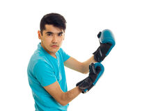 Portrait of strong guy practicing boxing in blue gloves isolated on white background Stock Image