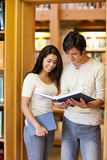 Portrait of students looking at a book. In the library Royalty Free Stock Images