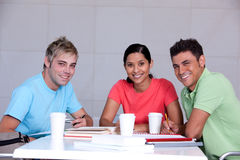 Portrait of study group. Working by desk Royalty Free Stock Photo