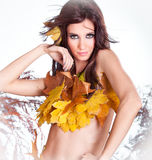 Portrait of a styled professional model. Autumn fashion stock photography