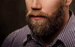 Portrait of stylish bearded man isolated on  gray. Stock Photo