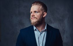 Portrait of stylish blond bearded male dressed in a suit. Stock Photography