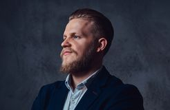 Portrait of stylish blond bearded male dressed in a suit. Stock Image
