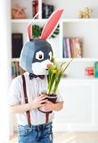 Portrait of stylish polygonal easter rabbit with a fresh spring potted flowers, polygonal mask royalty free stock images