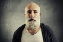 Portrait of stylish senior man with grey-haired beard Royalty Free Stock Image