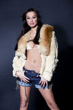 Portrait of an stylish woman in fur Royalty Free Stock Photography