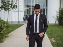 Stylish handsome young man wearing business suit royalty free stock images