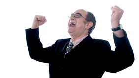 Portrait of a successful businessman. Successful old businessman shouting in excitement with arms up Stock Images