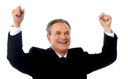 Portrait of a successful businessman Royalty Free Stock Photo