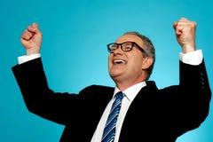 Portrait of a successful businessman Stock Photos
