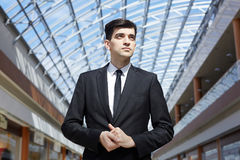 Portrait of Successful Businessman Royalty Free Stock Photos