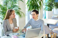 Two Business Women Meeting in Cafe Royalty Free Stock Images