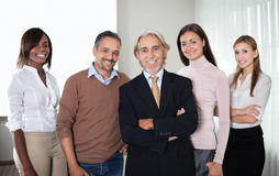 Portrait of successful team of business professionals royalty free stock photography
