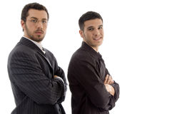 Portrait of successful young executives Royalty Free Stock Image