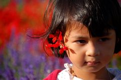 Portrait of Summer. Portrait of a little Asian girl with salvia at her ear in summer Stock Images