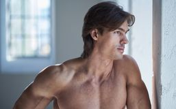 Portrait of suntanned shirtless male near window. Portrait of shirtless muscular male in natural light Royalty Free Stock Images