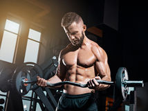 Portrait of super fit muscular young man working out in gym with barbell. On gray Stock Images