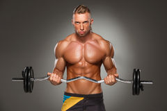 Portrait of super fit muscular young man working Royalty Free Stock Images
