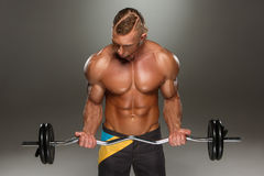 Portrait of super fit muscular young man working Royalty Free Stock Photo