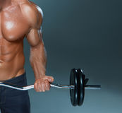 Portrait of super fit muscular young man working Royalty Free Stock Photos