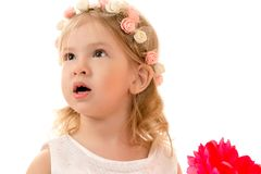 Portrait surprised charming girl with rim on head Royalty Free Stock Photography