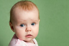 Portrait of surprised little girl. Portrait of the surprised kid on a green background Royalty Free Stock Image