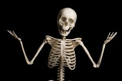 Portrait of surprised skeleton standing over black background. Stock Photography